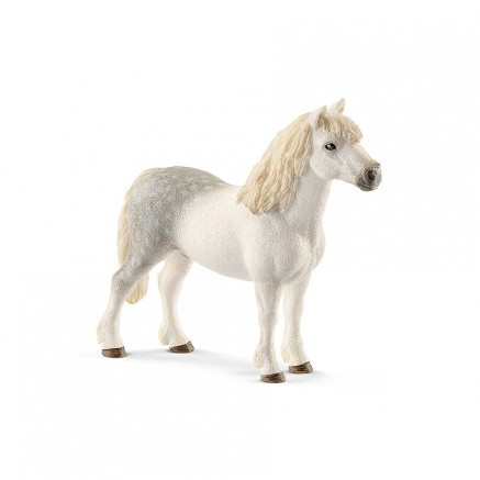 STALLONE PONY GALLESE